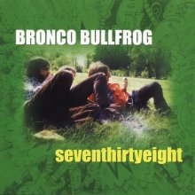 bronco-bullfrog